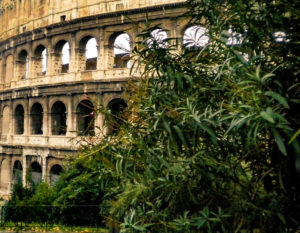 Coliseo de Roma, capital de Italia.