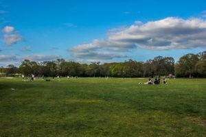 Common Park de Southampton, Reino Unido.