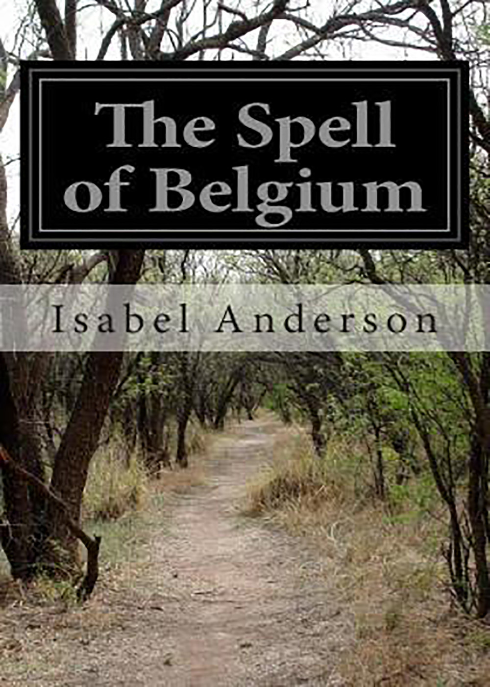 Isabel Anderson - The Spell of Belgium